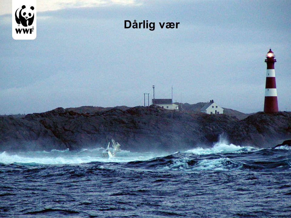 Dårlig vær Oljesøl skjer gjerne på vanskelig tilgjengelige steder, kaldt, for varmt, vind, sjø 8