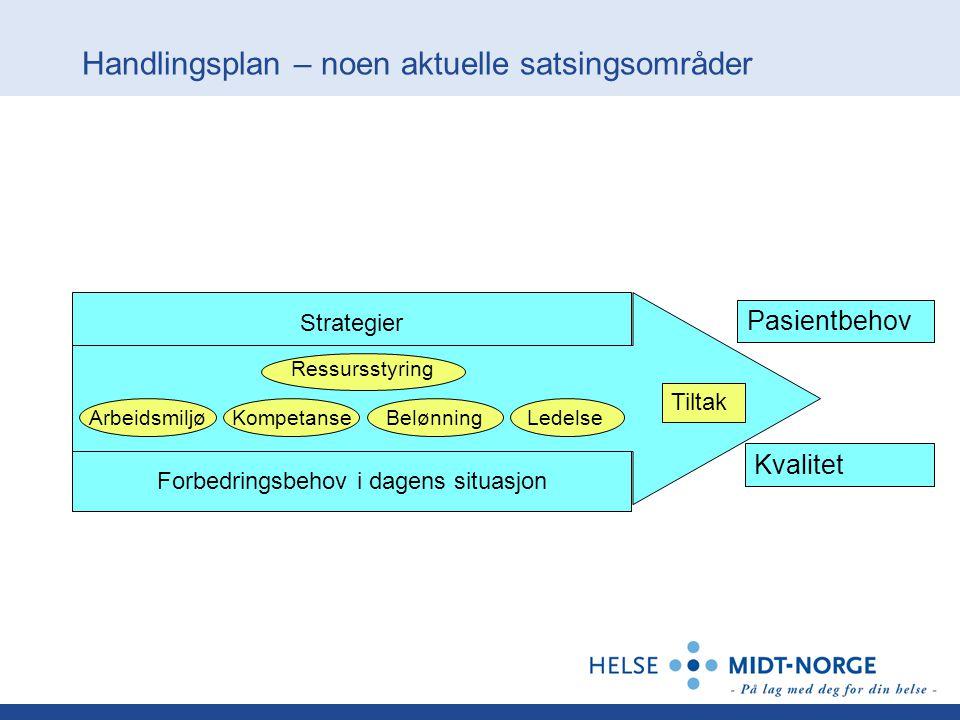 Handlingsplan – noen aktuelle satsingsområder