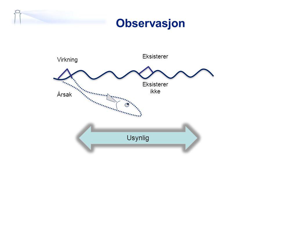 Observasjon Eksisterer Eksisterer ikke Virkning Årsak Usynlig