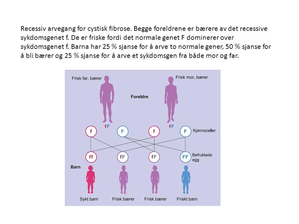 Recessiv arvegang for cystisk fibrose