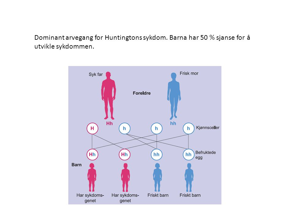 Dominant arvegang for Huntingtons sykdom