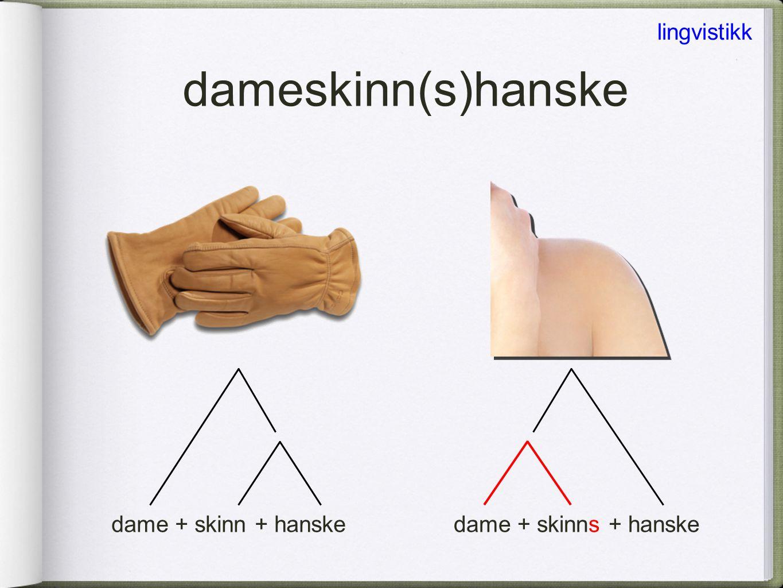 dameskinn(s)hanske lingvistikk dame + skinn + hanske