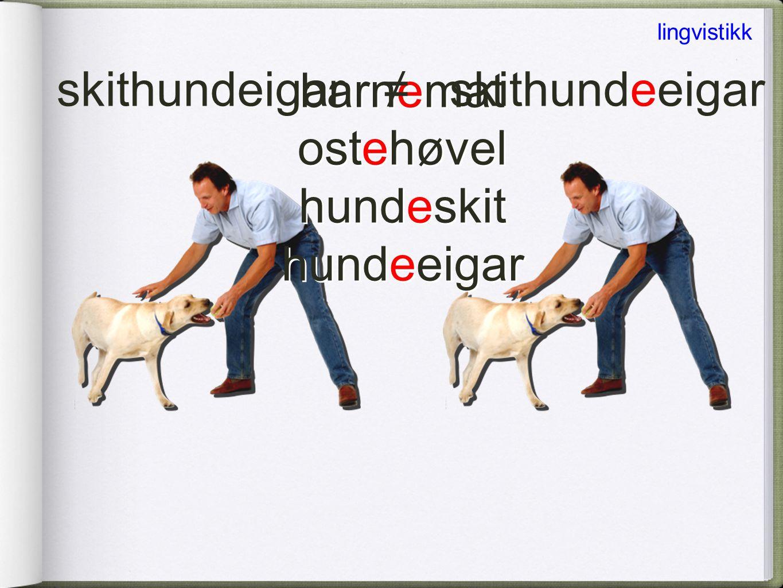 skithundeigar ≠ skithundeeigar