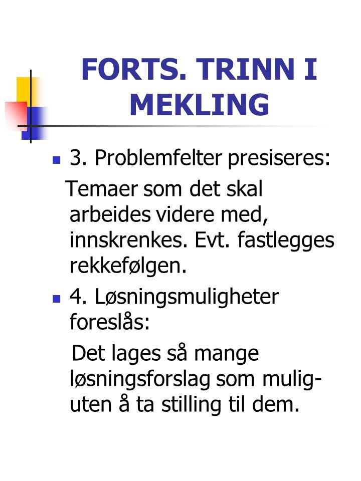 FORTS. TRINN I MEKLING 3. Problemfelter presiseres: