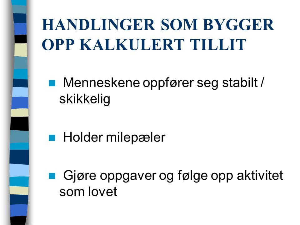 HANDLINGER SOM BYGGER OPP KALKULERT TILLIT