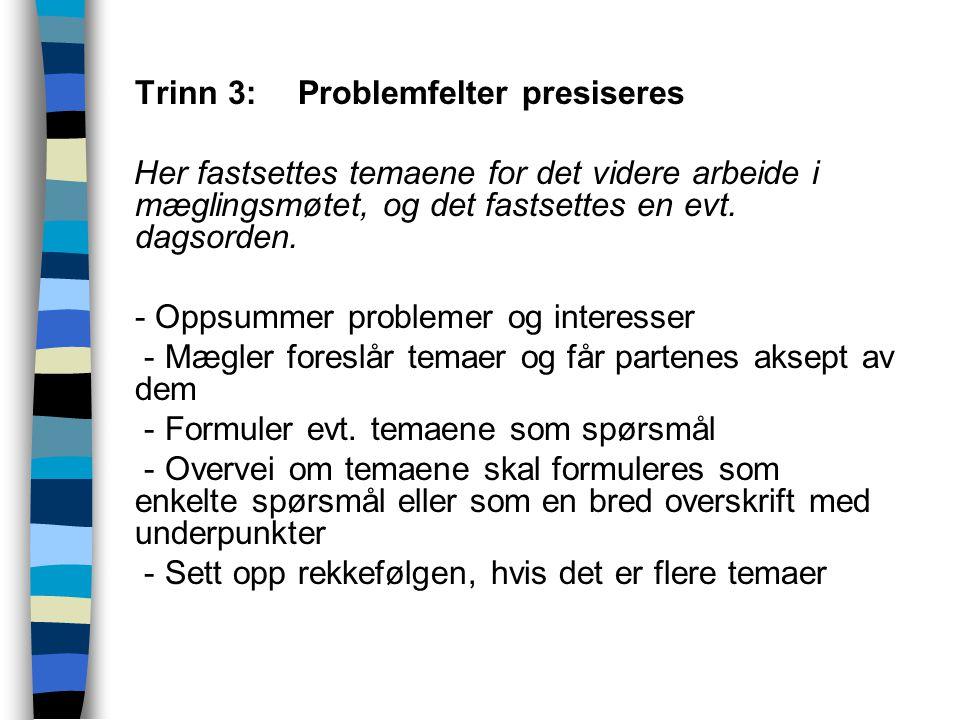 Trinn 3: Problemfelter presiseres