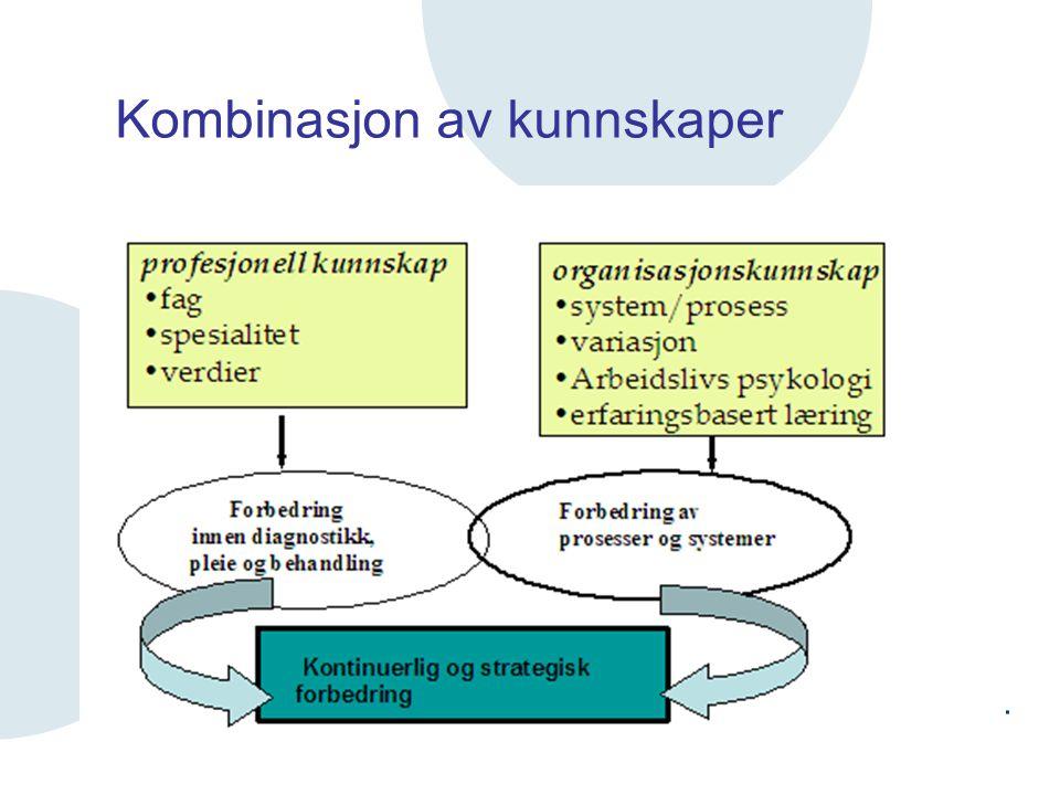 Kombinasjon av kunnskaper