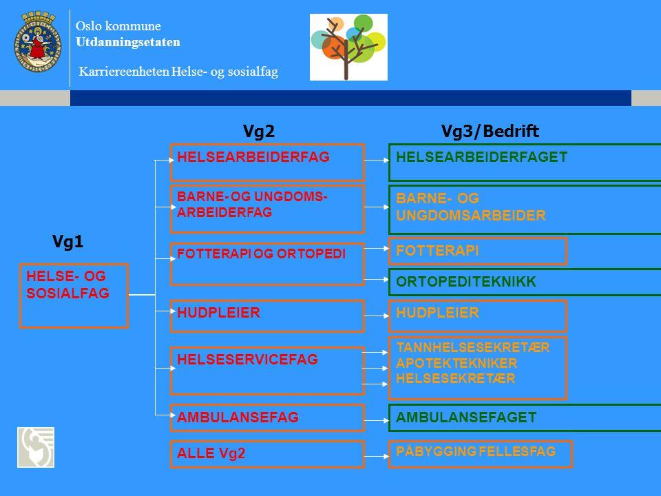 Vg2 Vg3/Bedrift Vg1 HELSEARBEIDERFAG HELSEARBEIDERFAGET BARNE- OG
