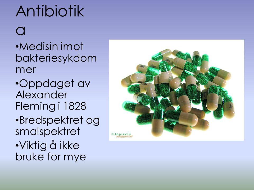 Antibiotika Medisin imot bakteriesykdommer