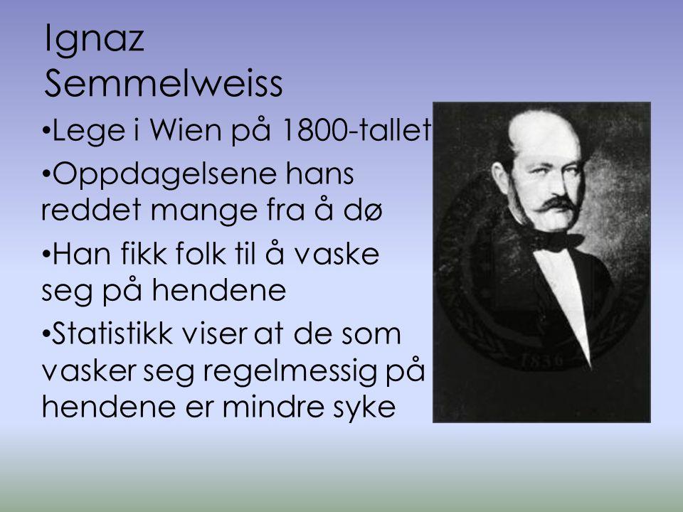 Ignaz Semmelweiss Lege i Wien på 1800-tallet