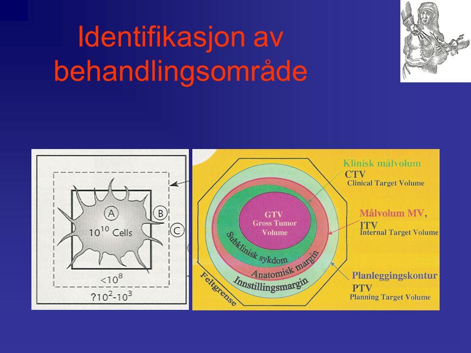 Identifikasjon av behandlingsområde