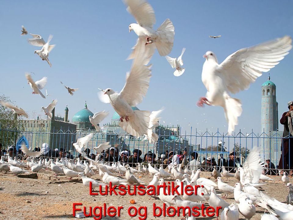 Luksusartikler: Fugler og blomster