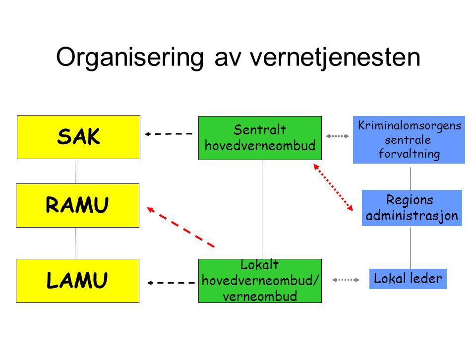 Organisering av vernetjenesten
