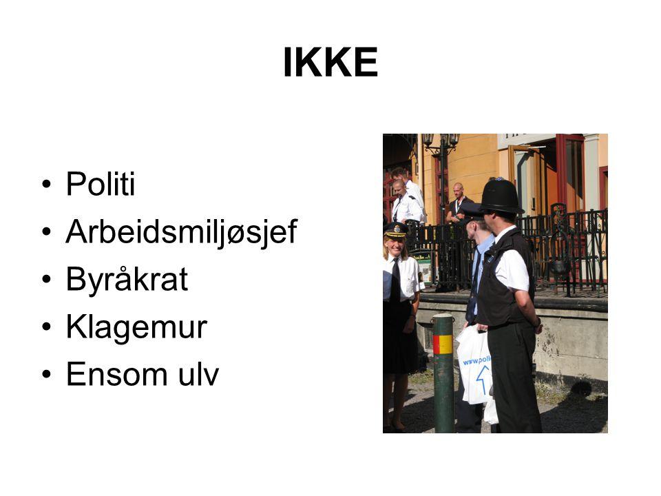 IKKE Politi Arbeidsmiljøsjef Byråkrat Klagemur Ensom ulv
