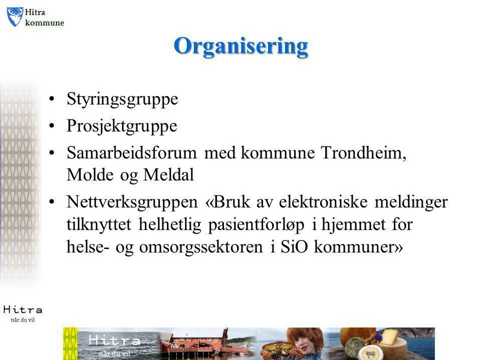 Organisering Styringsgruppe Prosjektgruppe