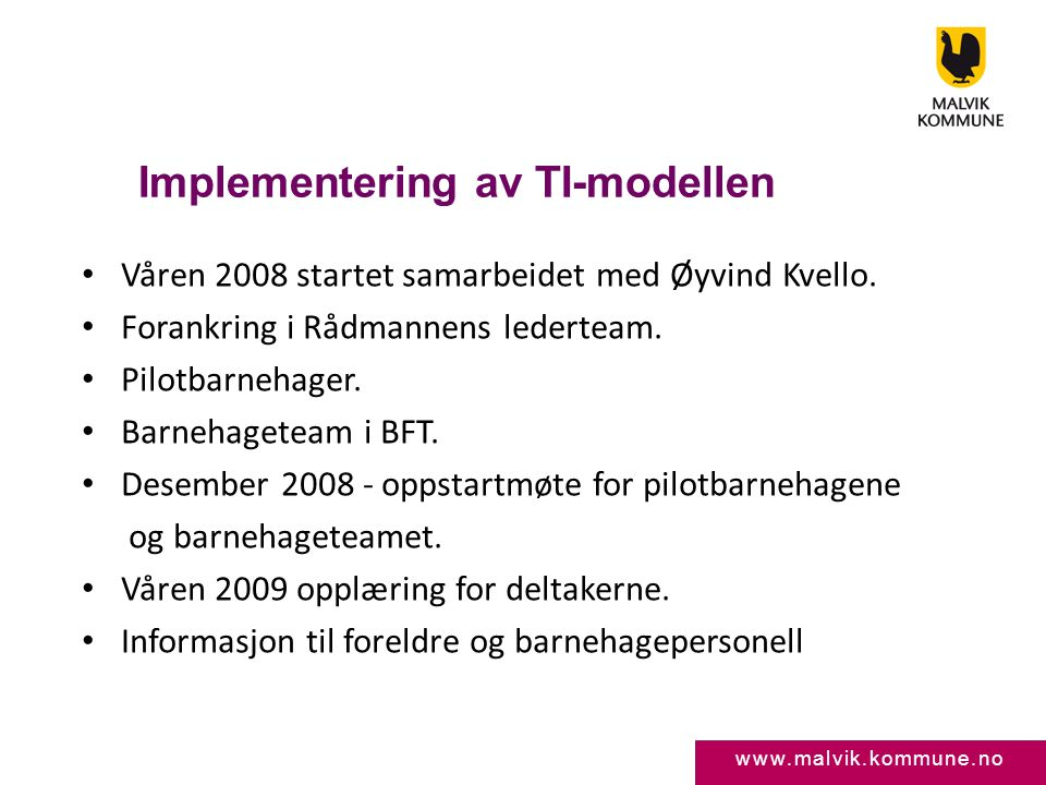 Implementering av TI-modellen