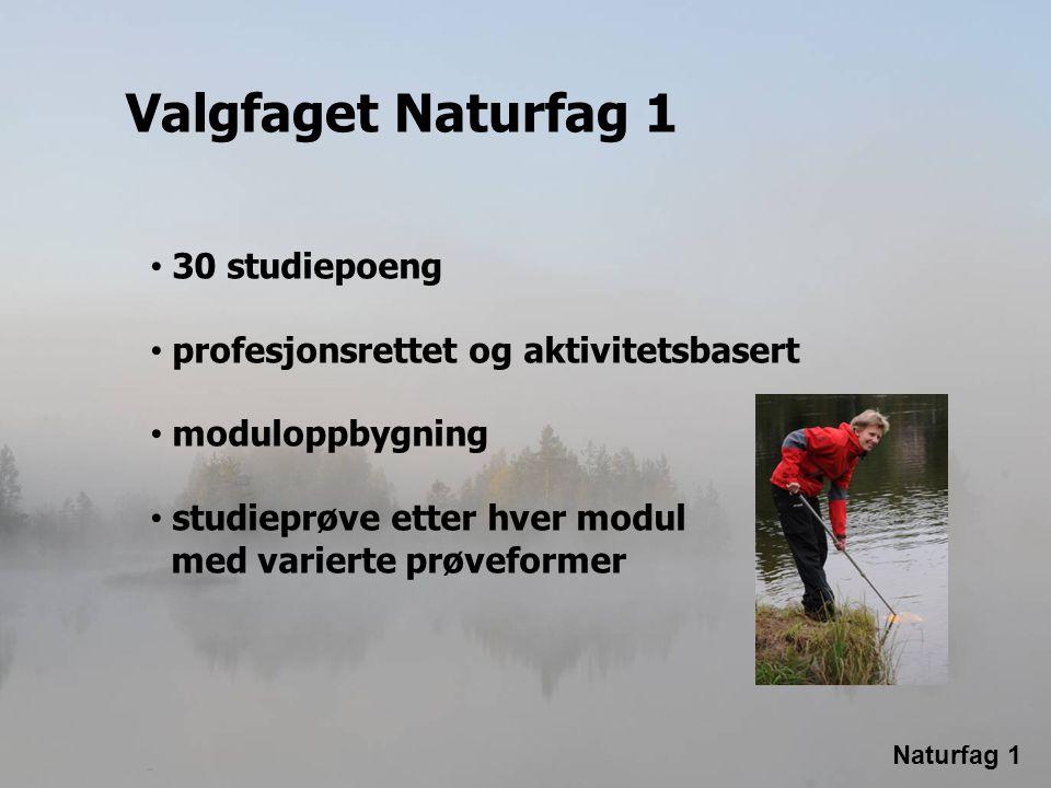 Valgfaget Naturfag 1 30 studiepoeng