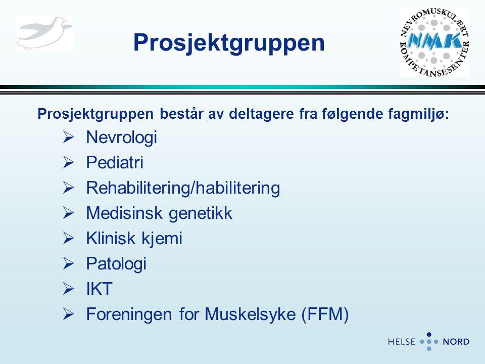 Prosjektgruppen Nevrologi Pediatri Rehabilitering/habilitering