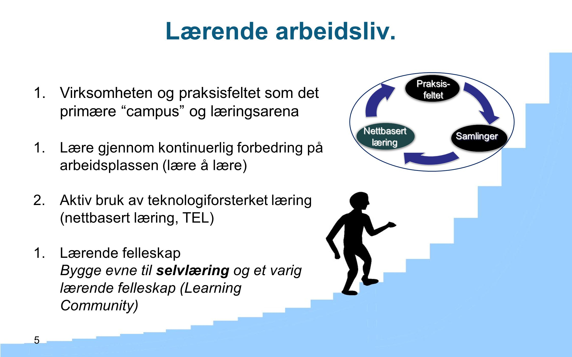 Lærende arbeidsliv. Virksomheten og praksisfeltet som det primære campus og læringsarena.