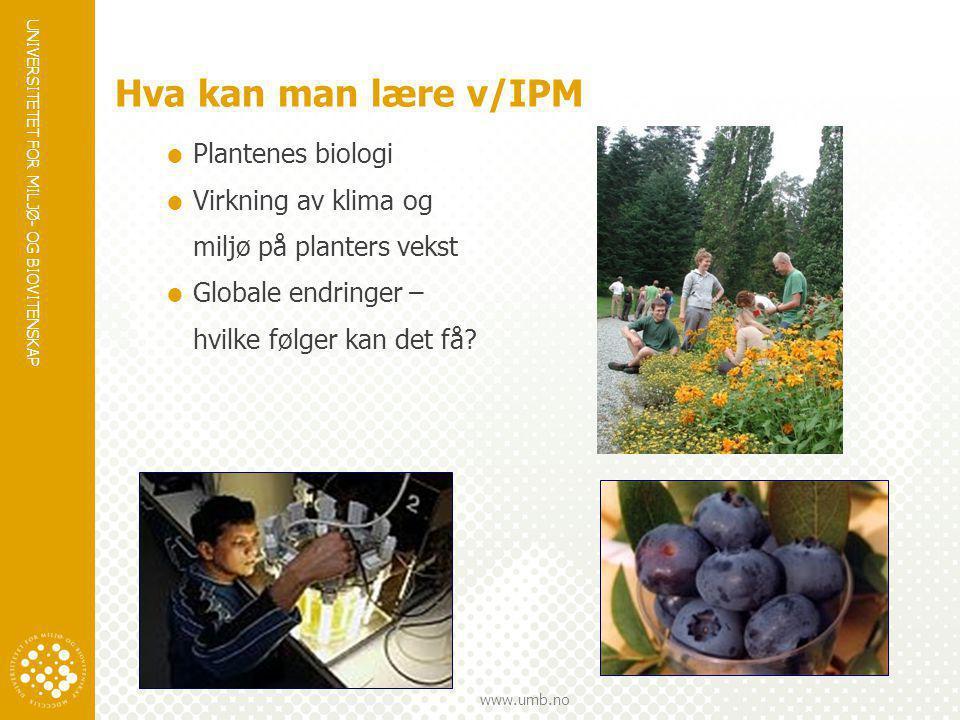 Hva kan man lære v/IPM Plantenes biologi Virkning av klima og