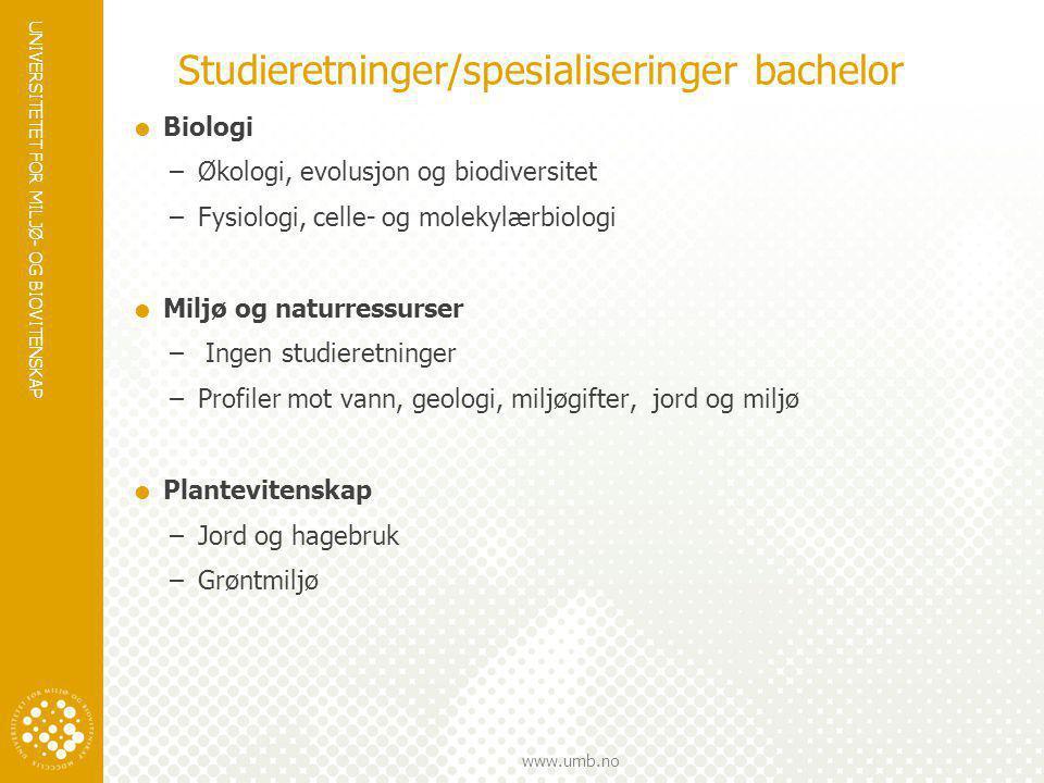 Studieretninger/spesialiseringer bachelor