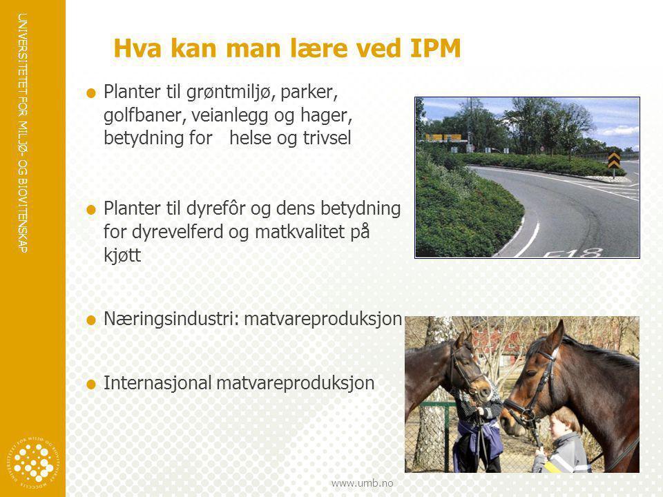 Hva kan man lære ved IPM Planter til grøntmiljø, parker, golfbaner, veianlegg og hager, betydning for helse og trivsel.