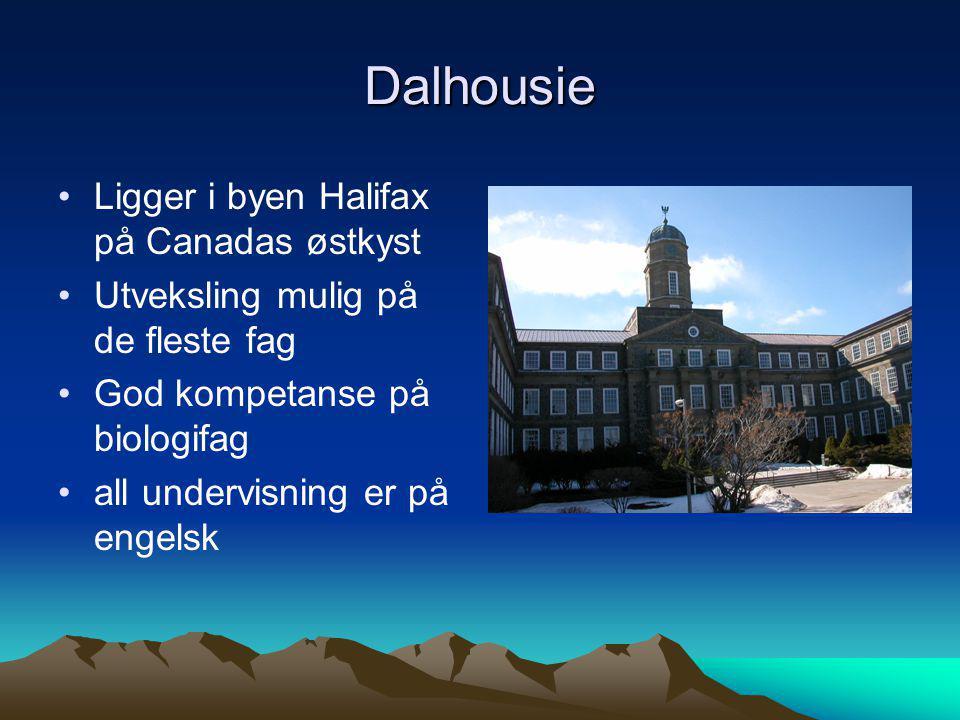Dalhousie Ligger i byen Halifax på Canadas østkyst