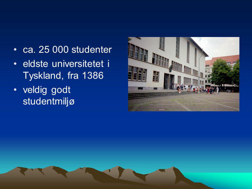 ca. 25 000 studenter eldste universitetet i Tyskland, fra 1386 veldig godt studentmiljø