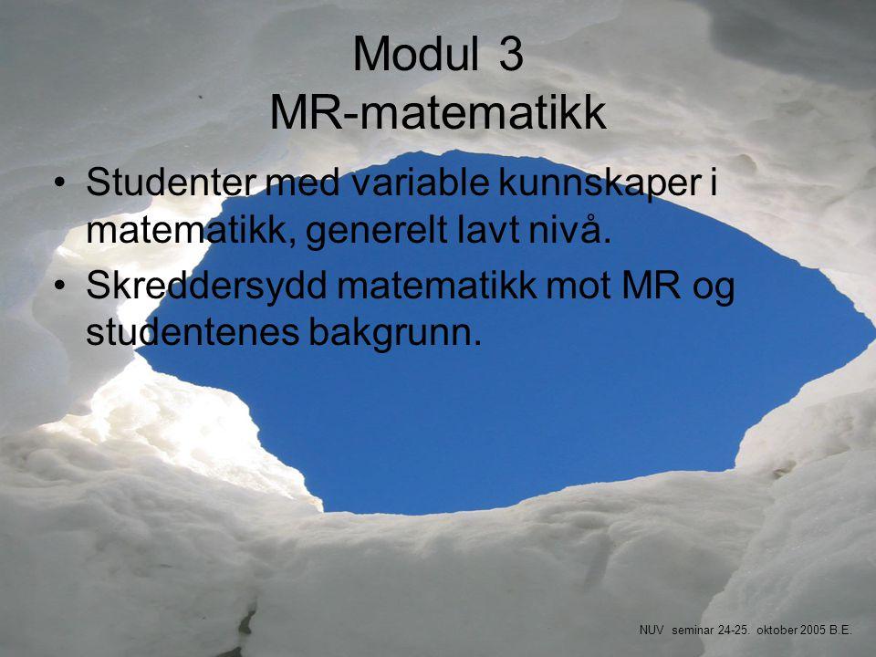 Modul 3 MR-matematikk Studenter med variable kunnskaper i matematikk, generelt lavt nivå. Skreddersydd matematikk mot MR og studentenes bakgrunn.