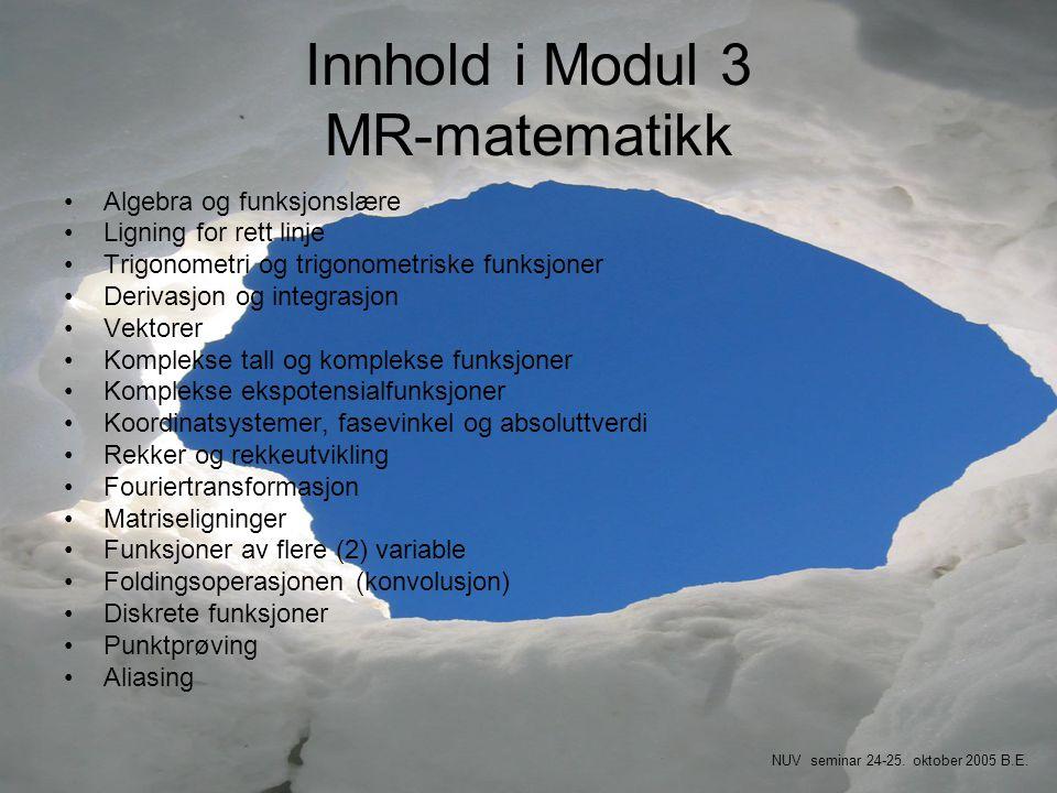 Innhold i Modul 3 MR-matematikk
