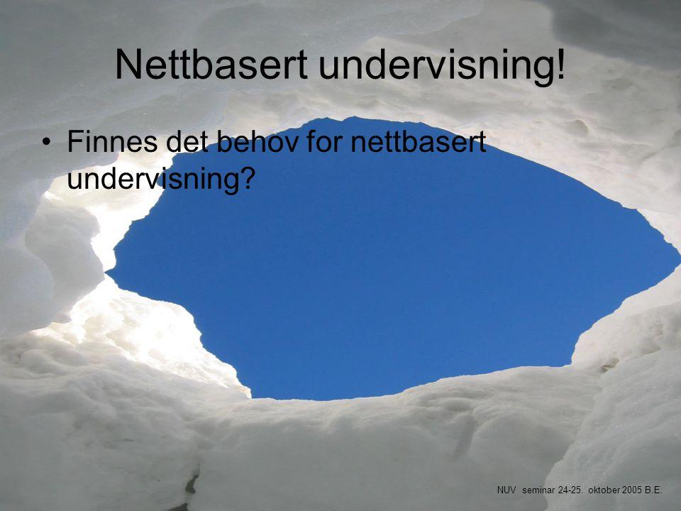 Nettbasert undervisning!