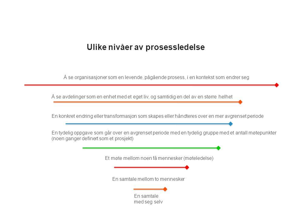Ulike nivåer av prosessledelse