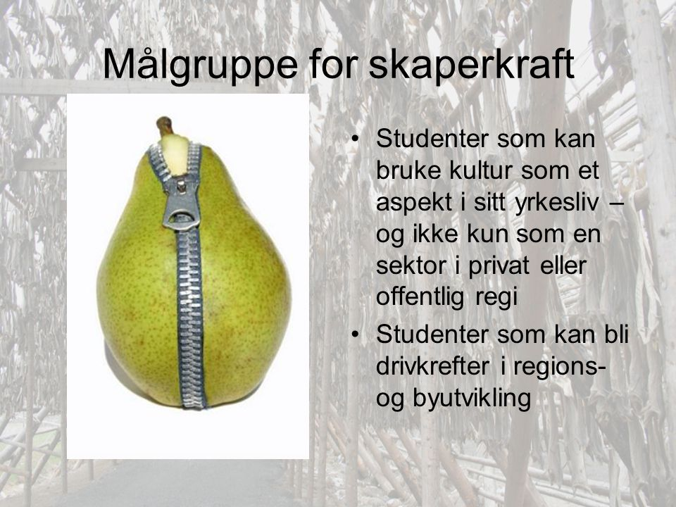 Målgruppe for skaperkraft