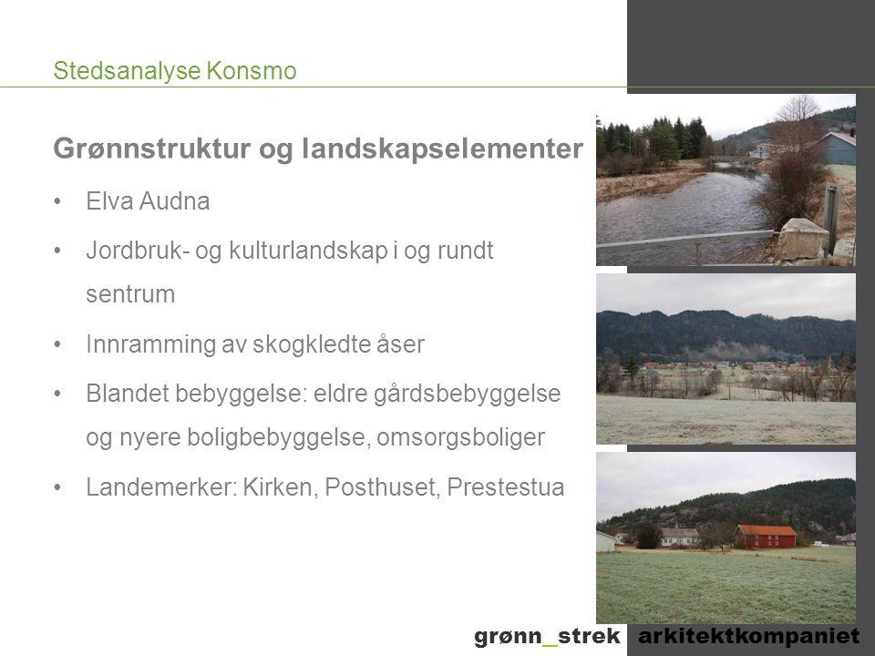 Grønnstruktur og landskapselementer