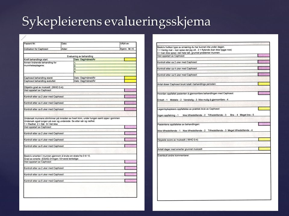 Sykepleierens evalueringsskjema