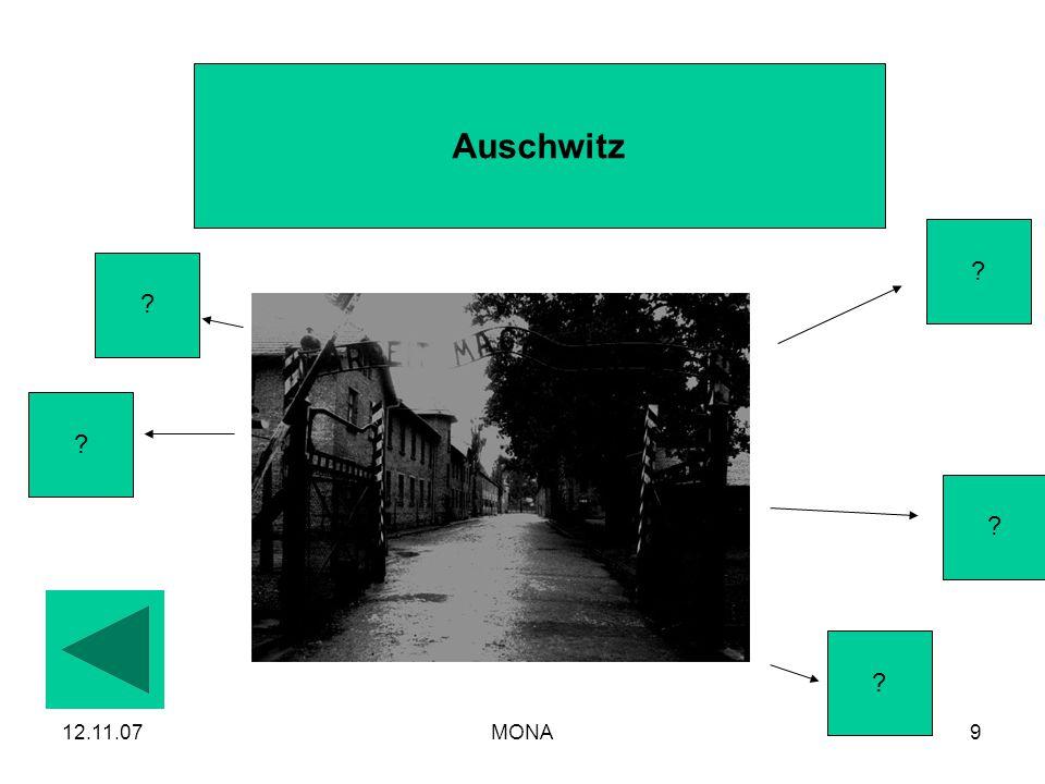 Auschwitz 12.11.07 MONA