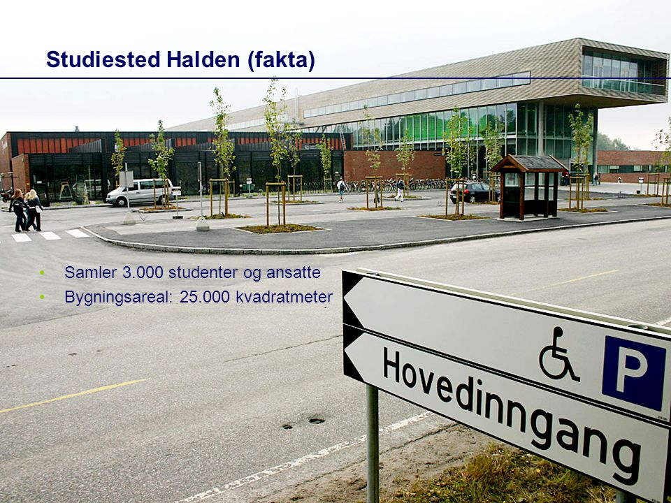 Studiested Halden (fakta)