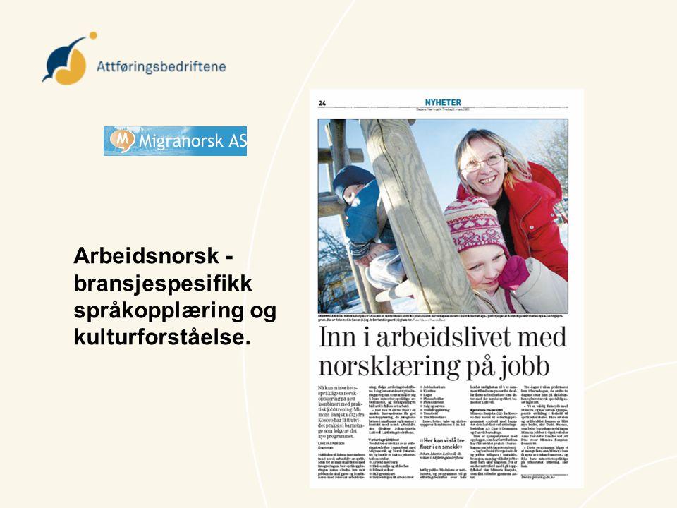 Arbeidsnorsk -bransjespesifikk språkopplæring og kulturforståelse.