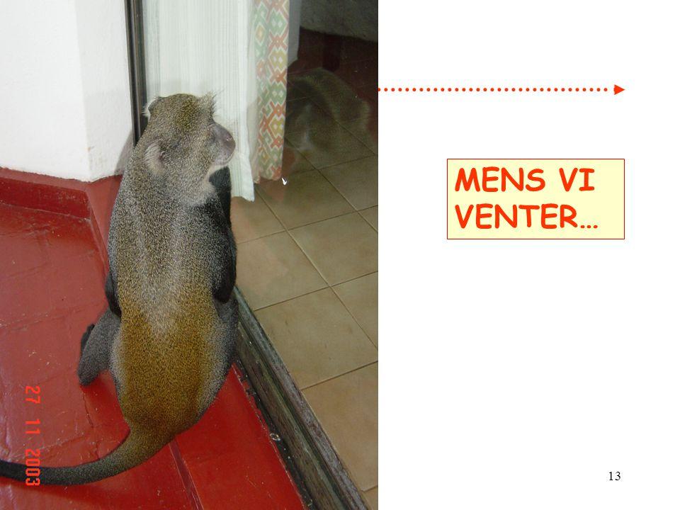 MENS VI VENTER…