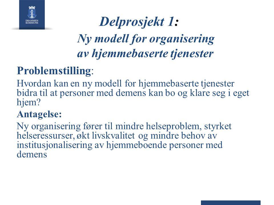 Delprosjekt 1: Ny modell for organisering av hjemmebaserte tjenester