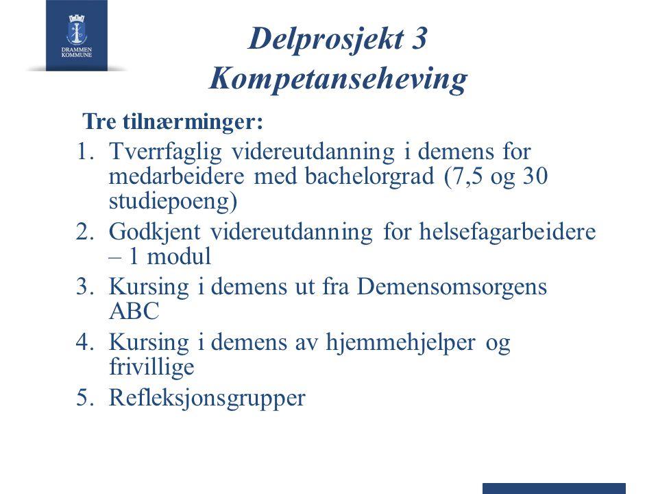 Delprosjekt 3 Kompetanseheving
