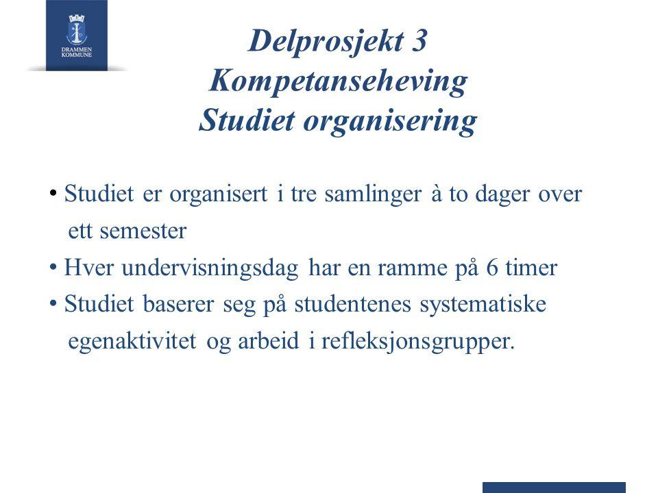 Delprosjekt 3 Kompetanseheving Studiet organisering