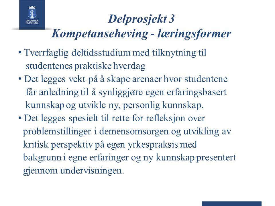 Delprosjekt 3 Kompetanseheving - læringsformer