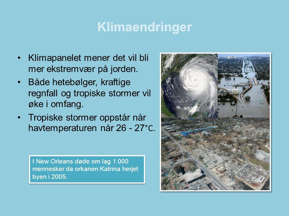 Klimaendringer Klimapanelet mener det vil bli mer ekstremvær på jorden. Både hetebølger, kraftige regnfall og tropiske stormer vil øke i omfang.