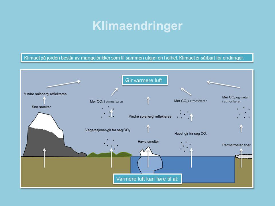 Klimaendringer Klimaet på jorden består av mange brikker som til sammen utgjør en helhet. Klimaet er sårbart for endringer.
