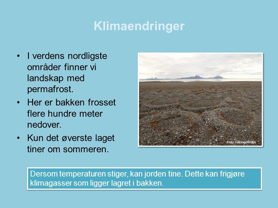 Klimaendringer I verdens nordligste områder finner vi landskap med permafrost. Her er bakken frosset flere hundre meter nedover.