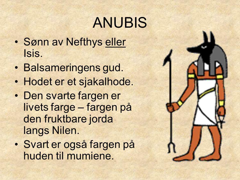ANUBIS Sønn av Nefthys eller Isis. Balsameringens gud.
