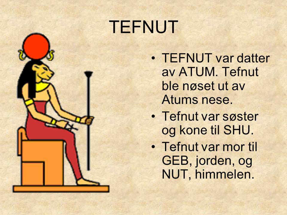 TEFNUT TEFNUT var datter av ATUM. Tefnut ble nøset ut av Atums nese.
