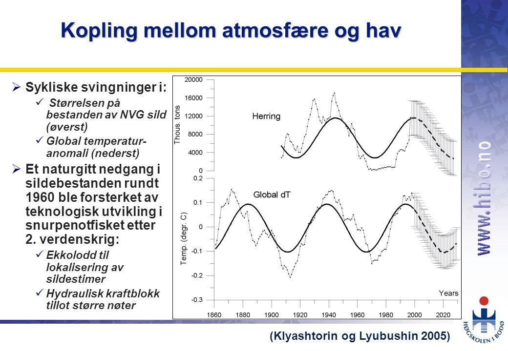 Kopling mellom atmosfære og hav