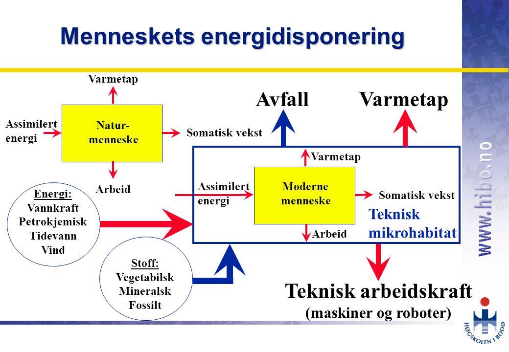 Menneskets energidisponering